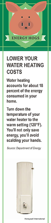 2016_11_sw_energyhogsgraphic
