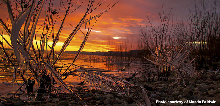 A Winter Take on the Lake