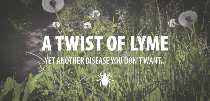 A Twist of Lyme…yet another disease you don't want…