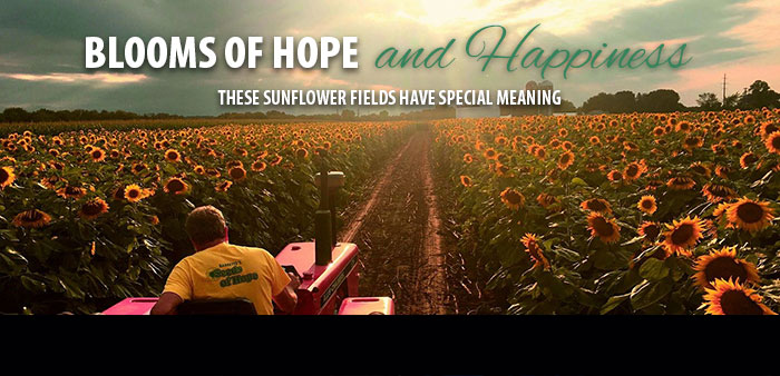 Blooms of Hope and Happiness