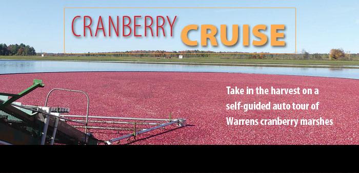 Cranberry Cruise
